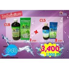 คลอโรฟิลล์ ขวดใหญ่+ขวดเล็ก[ CLB 1 + CLS 2ขวด ]